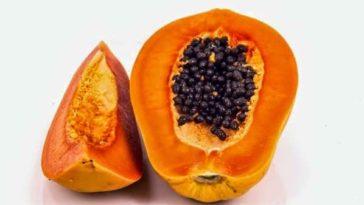 Semillas de papaya y sus cinco efectos positivos para el cuerpo
