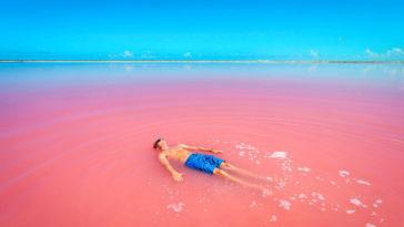 las coloradas yucatan rosa lago mar