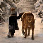 tips cuidar perro mascota viajes invierno