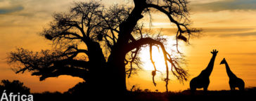 paquete viaja bonito africa viaje