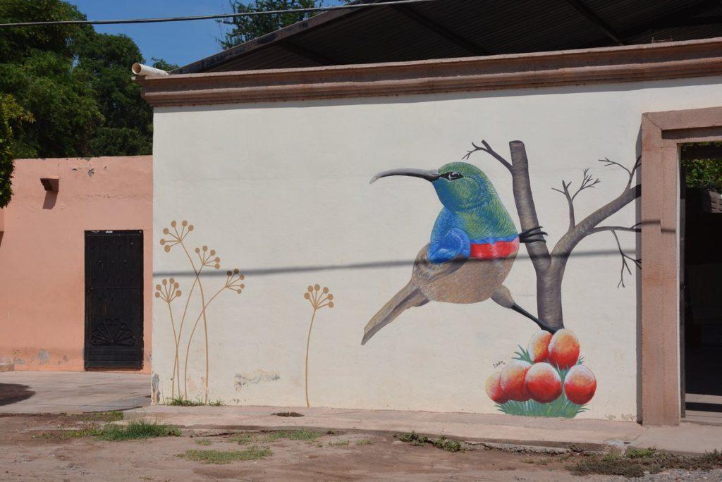 Ciudad Obregón