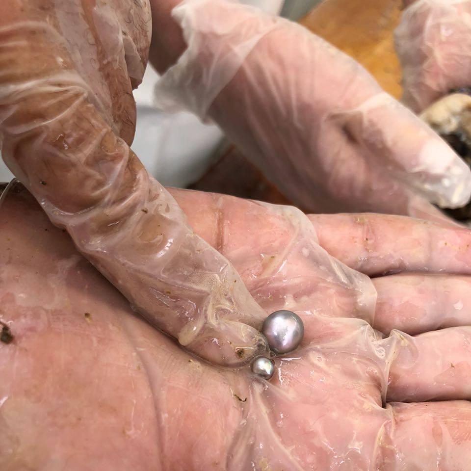 perlas del mar de cortés