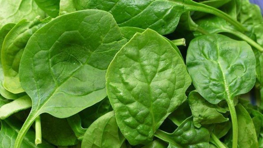 come verde y fortalece el sistema inmunológico