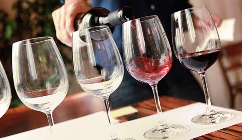Generalidades antes de la cata de vinos
