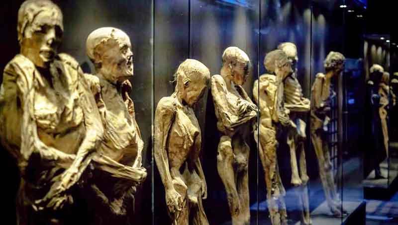 que hacer en Guanajuato momias