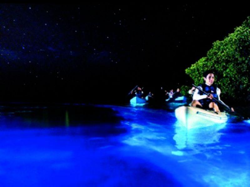 Playas bioluminiscentes en México: XPICOB, Campeche