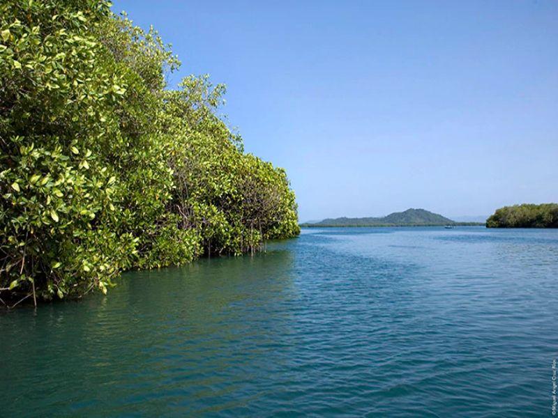 ¿Cuándo es la mejor temporada para visitarla laguna de Chacahua?